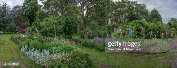 gardens of buckingham palace, london - buckingham palace stock pictures, royalty-free photos & images