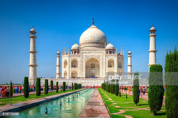 gardens of the taj mahal, agra, india - taj mahal stock pictures, royalty-free photos & images