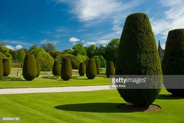gardens on the estate of lanhydrock - トピアリー ストックフォトと画像