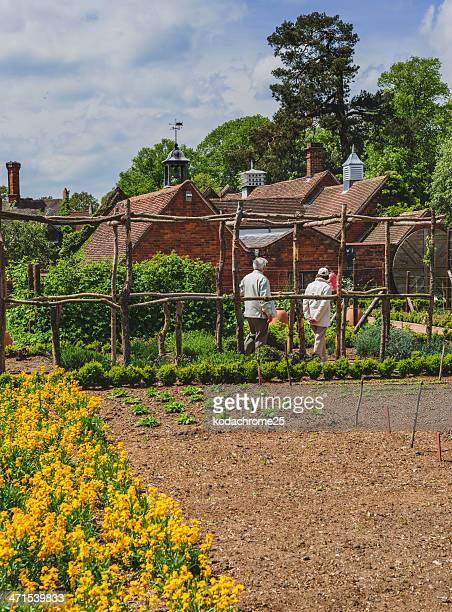 gardens - social history stock pictures, royalty-free photos & images