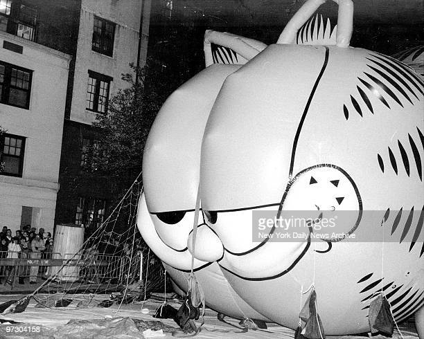 Garfield the cat's grin keeps getting wider as technicians pump helium into the big balloon at 77th St and Central Park West Garfield was one of a...