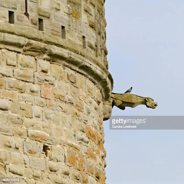 Gargoyle at Medieval Carcassonne - France