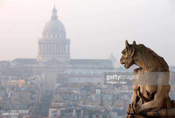 Gargoyle at Notre Dame Cathedral