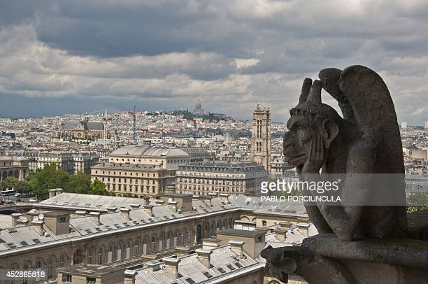 A gargoyle of the Notre Dame Cathedral is seen on July 8 2014 in Paris AFP PHOTO / Pablo PORCIUNCULA