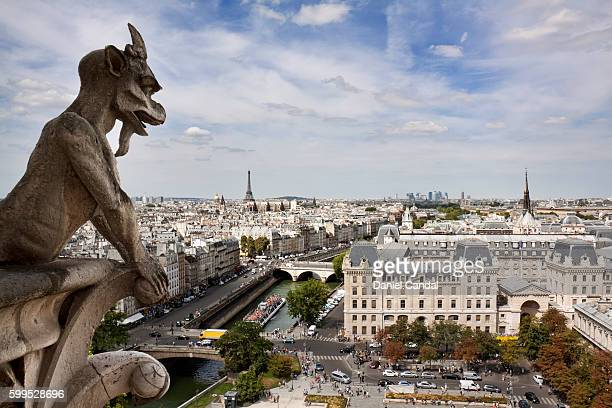 Gargoyle of the Notre Dame Cathedral, Paris, France