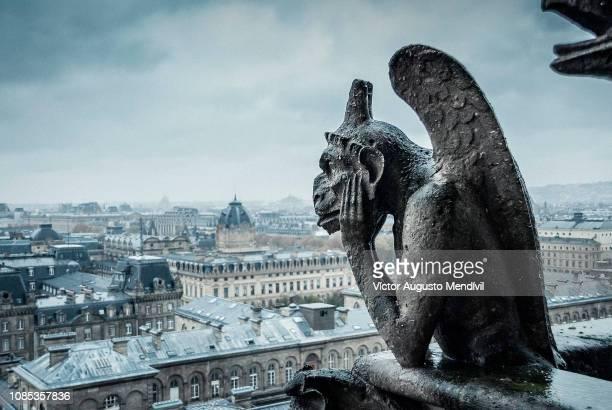 gargoyle - パリ ノートルダム大聖堂 ストックフォトと画像