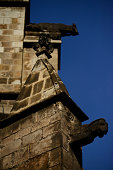 Gargoyles of the Cathedral of Barcelona