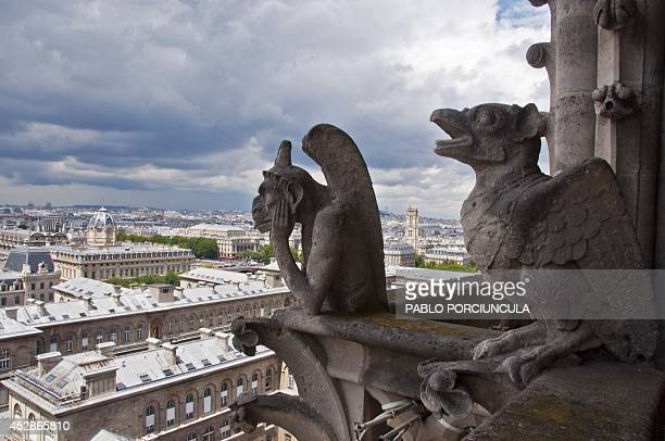 Gargoyles of the Notre Dame Cathedral are seen on July 8 2014 in Paris AFP PHOTO / Pablo PORCIUNCULA