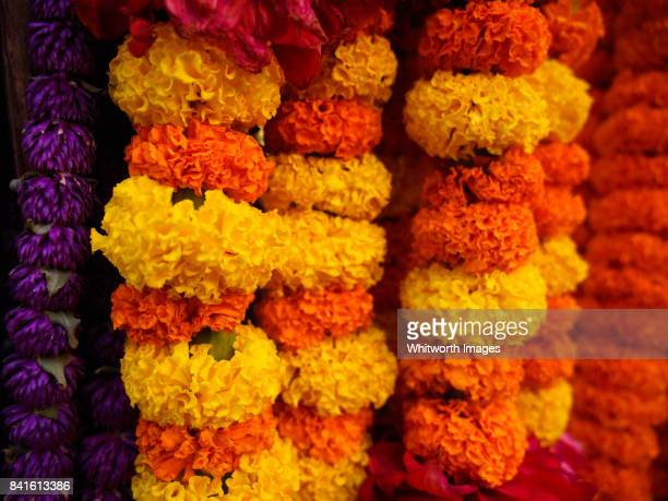 garlands of marigolds for sale in nepal for use in dashain and tihaar festivals - dashain stock photos and pictures