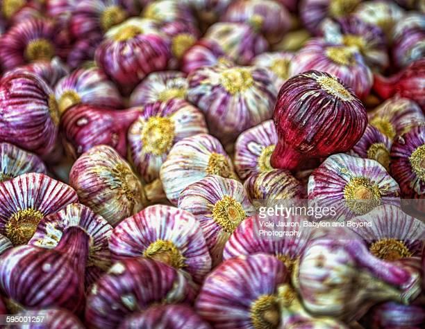 garlic at the market in vannes - ヴァンヌ ストックフォトと画像