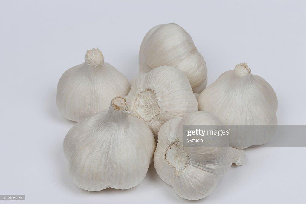 Garlic : Bildbanksbilder