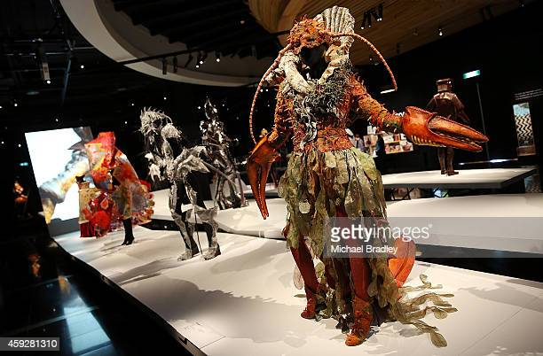 Garments on show at the Auckland War Memorial Museum's World of Wearable Art exhibition opening at Auckland Museum on November 20 2014 in Auckland...