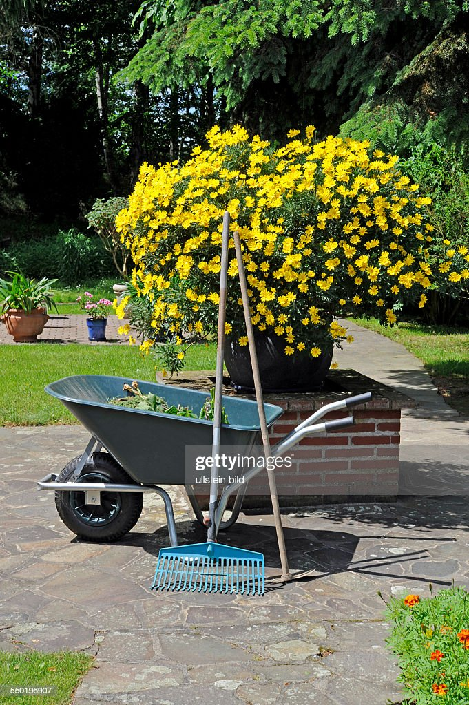 Gartenarbeit  Gartenarbeit Pictures | Getty Images