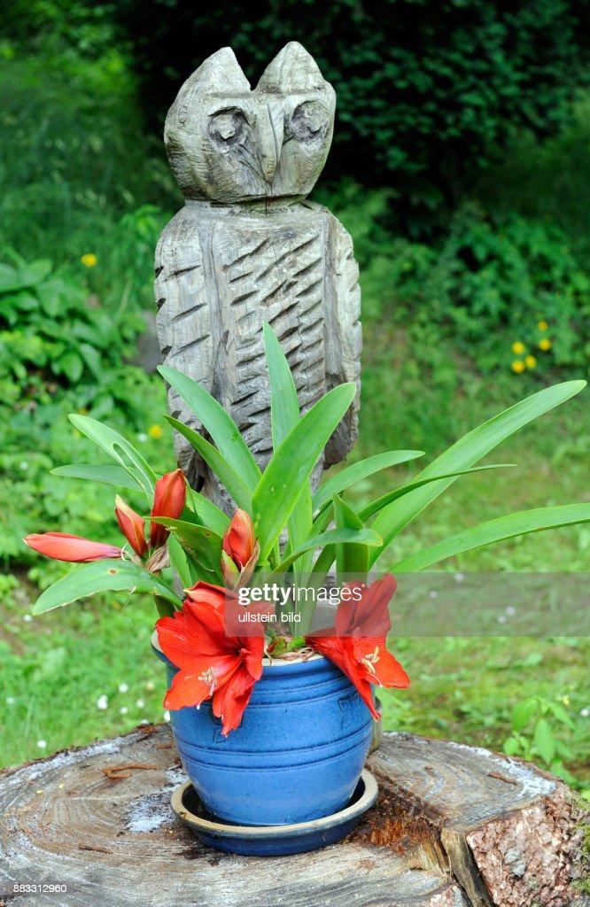 Gartendekoration Auf Einer Baumscheibe Mit Der Kettensaege News