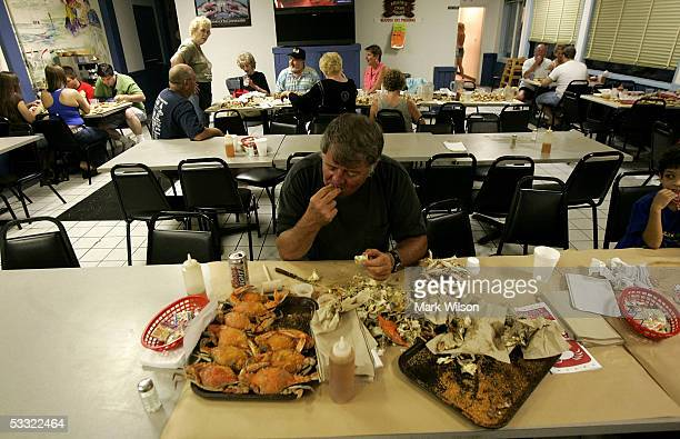 Gary Anderson feast's on a plate of Blue Crabs at Abner's Crabhouse August 3 2005 in Chesapeake Beach Maryland The Maryland Blue Crab has been in...