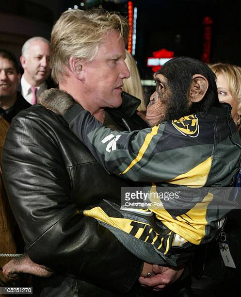 Gary Busey and Cody during Motocross Kids Premiere at Loew's Universal CityWalk in Universal City California United States