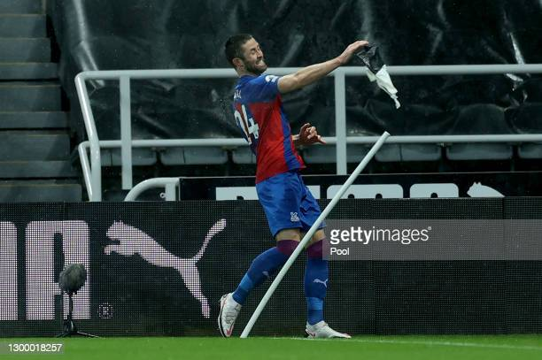 Gary Cahill of Crystal Palace celebrates after scoring their side's first goal during the Premier League match between Newcastle United and Crystal...