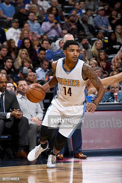 Gary Harris of the Denver Nuggets handles the ball against the Golden State Warriors on November 10 2016 at the Pepsi Center in Denver Colorado NOTE...