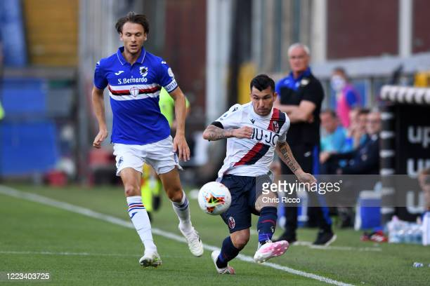Gary Medel of Bologna FC challenged by Albin Ekdal of UC Sampdoria during the Serie A match between UC Sampdoria and Bologna FC at Stadio Luigi...