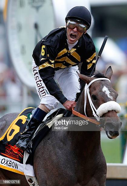 Gary Stevens celebrates atop of Oxbow after crossing the finish line to win the 138th running of the Preakness Stakes at Pimlico Race Course on May...