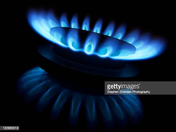 Gas Burner - Fossil Fuel Blue Flower