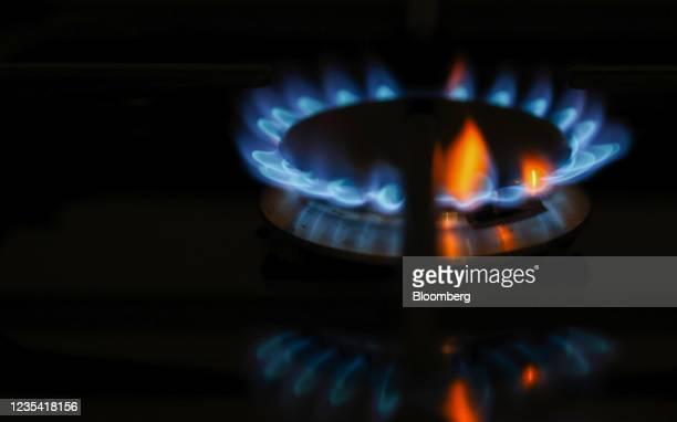 Gas burns on a domestic oven hob in Danbury, U.K., on Tuesday, Sept. 21, 2021. U.K. Business Secretary Kwasi Kwarteng warned the next few days will...