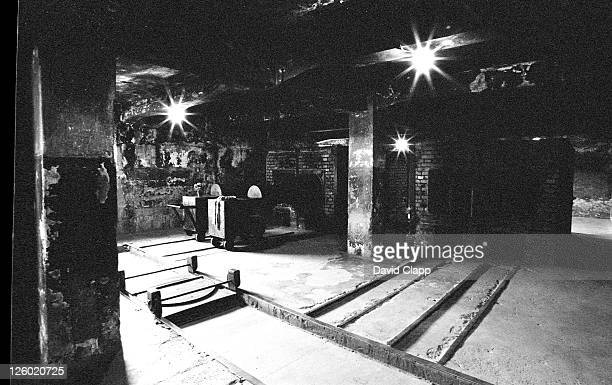 gas chamber burners, birkenau concentration camp, auschwitz, poland - birkenau stock pictures, royalty-free photos & images