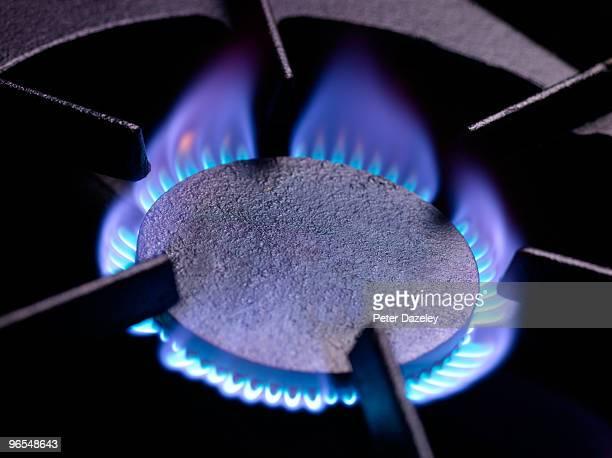 gas cooking ring with blue flame - boca de fogão a gás - fotografias e filmes do acervo