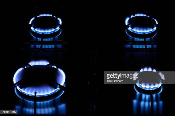 Gas flames on cooker hob England United Kingdom