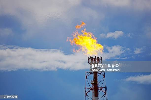 gas flare at petroleum and natural gas power plant - flare stack stock photos and pictures
