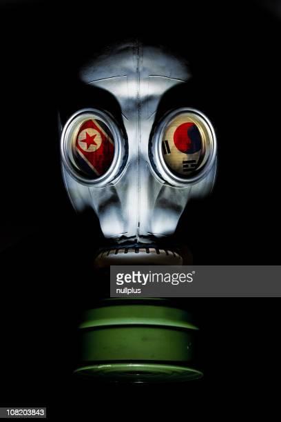 Maschera antigas con bandiere del Nord e Corea del sud nell'occhio zoccoli