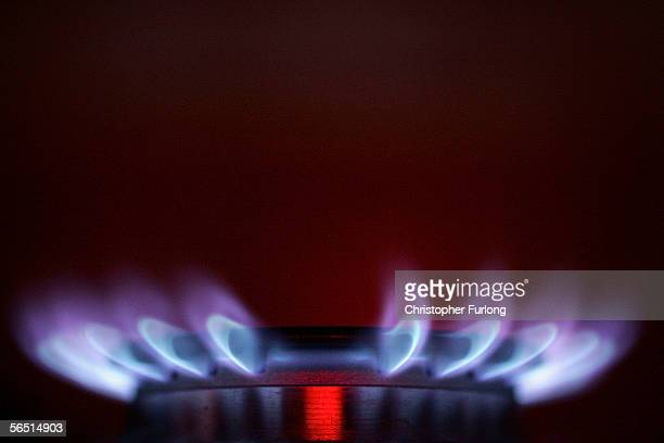 Gas ring on a domestic stove powered by natural gas is seen alight on January 3. 2005, Manchester, England. Russia had decreased pressure in the...
