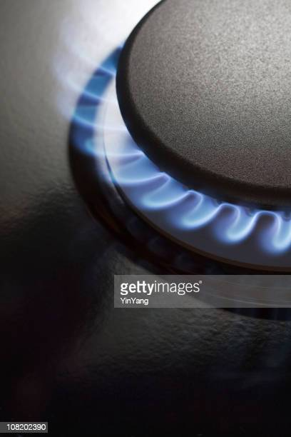 Gas Stove Burner