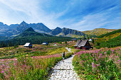 Gasienicowa Valley in Tatry mountains, Poland
