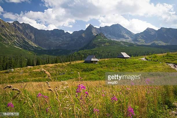 Gasienicowa Valley, Tatra Mountains, Poland