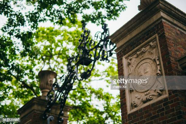 gate at harvard university, cambridge, massachusetts, usa - cambridge massachusetts stock pictures, royalty-free photos & images