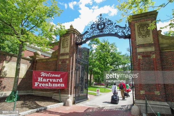 gate at harvard yard - harvard university stock pictures, royalty-free photos & images