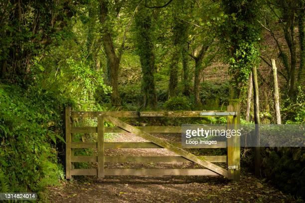 Gate at the entrance to Worthy Wood near Porlock Weir in the Exmoor National Park.