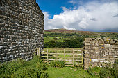Gateway beside traditional stone barn in Swaledale, Yorkshire Dales, England