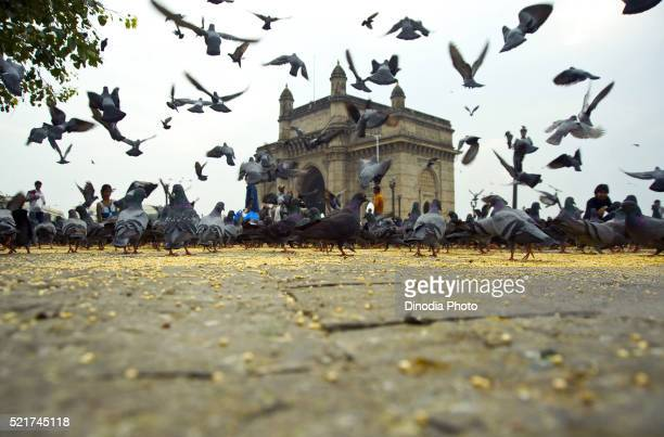 Gateway of india at Mumbai, maharashtra, India