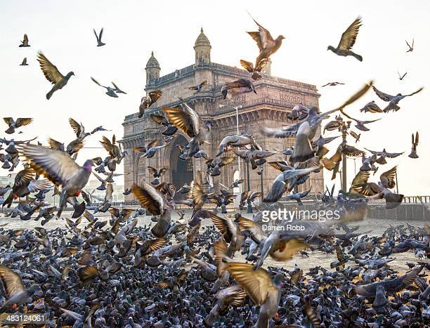 Gateway of India, monument, Mumbai