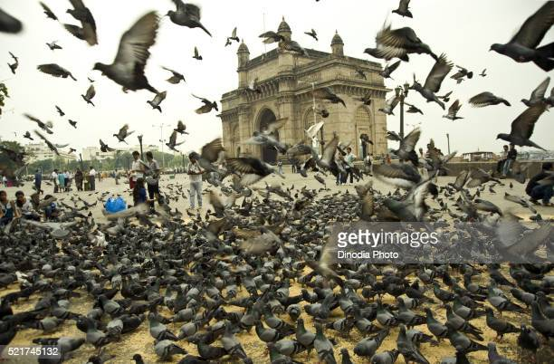 Gateway of india Mumbai, India, Asia