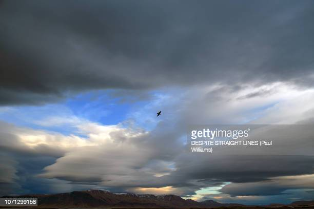 A gathering of stormclouds (East of Reykjavik, Iceland)