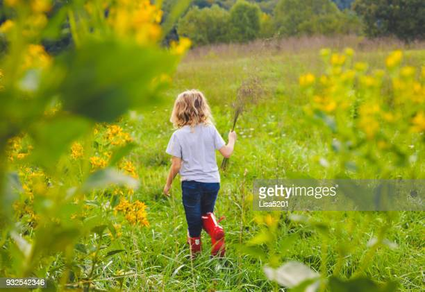 gathering wildflowers - mazzi fiori di campo foto e immagini stock