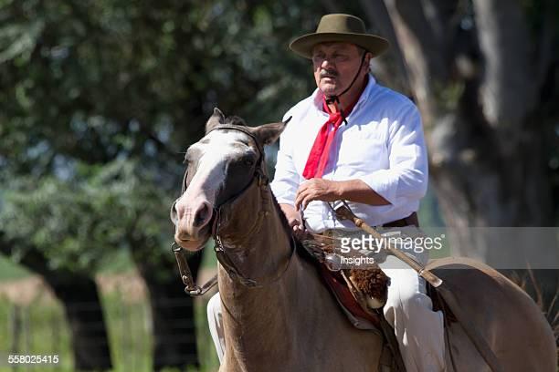 Gaucho riding a horse Estancia Santa Susana Los Cardales Provincia de Buenos Aires Argentina
