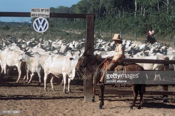 Gauchos zu Pferd mit einer Rinderherde an einem Gatter mit dem VW-Logo. . VW do Brasil, eine 80% Tochter des deutschen VW-Konzerns, betreibt seit...