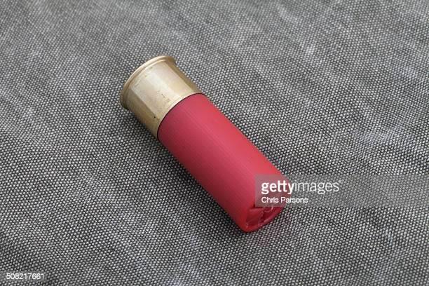 12 gauge shotgun shell