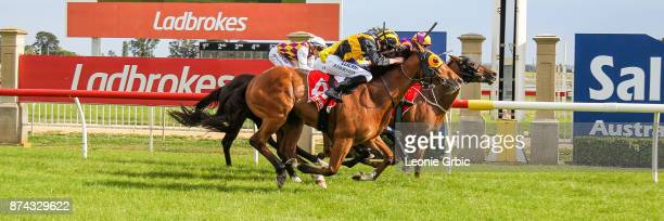 Gauteng Gal ridden by Brandon Stockdale wins the James Yeates Printing BM64 Handicap at Sale Racecourse on November 15 2017 in Sale Australia