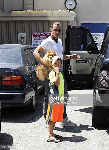 Gavin Rossdale and Kingston Rossdale are seen on June 16 2013 in Los Angeles California
