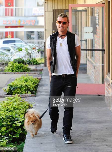 Gavin Rossdale is seen on December 27 2013 in Los Angeles California